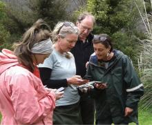 Community group members and representatives from Mountains to the Sea Wellington worked with Peter Handford from Groundtruth to have a play with the new app for uploading citizen science data [Photo credit: Richard Storey]